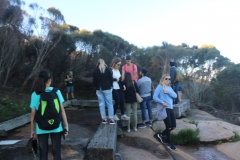 Bushwalks