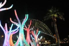 Vivid Festival