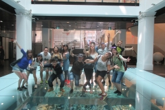 Museum Visits